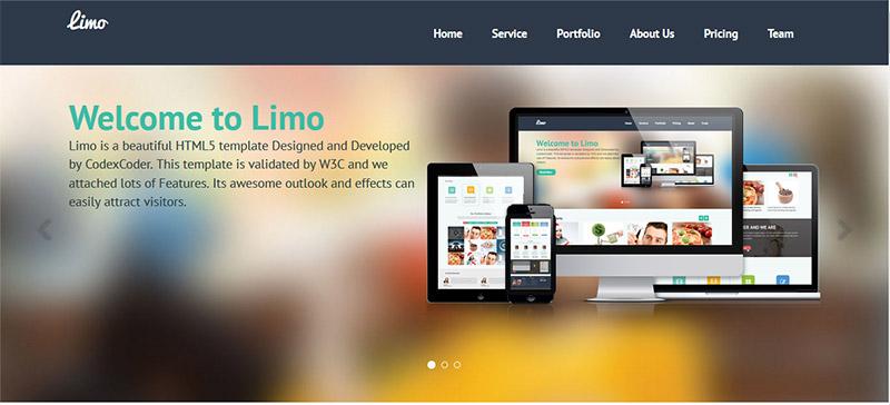 Landing page шаблон для WordPress № 2 limo